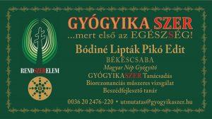 bodine_liptak_piko_edit